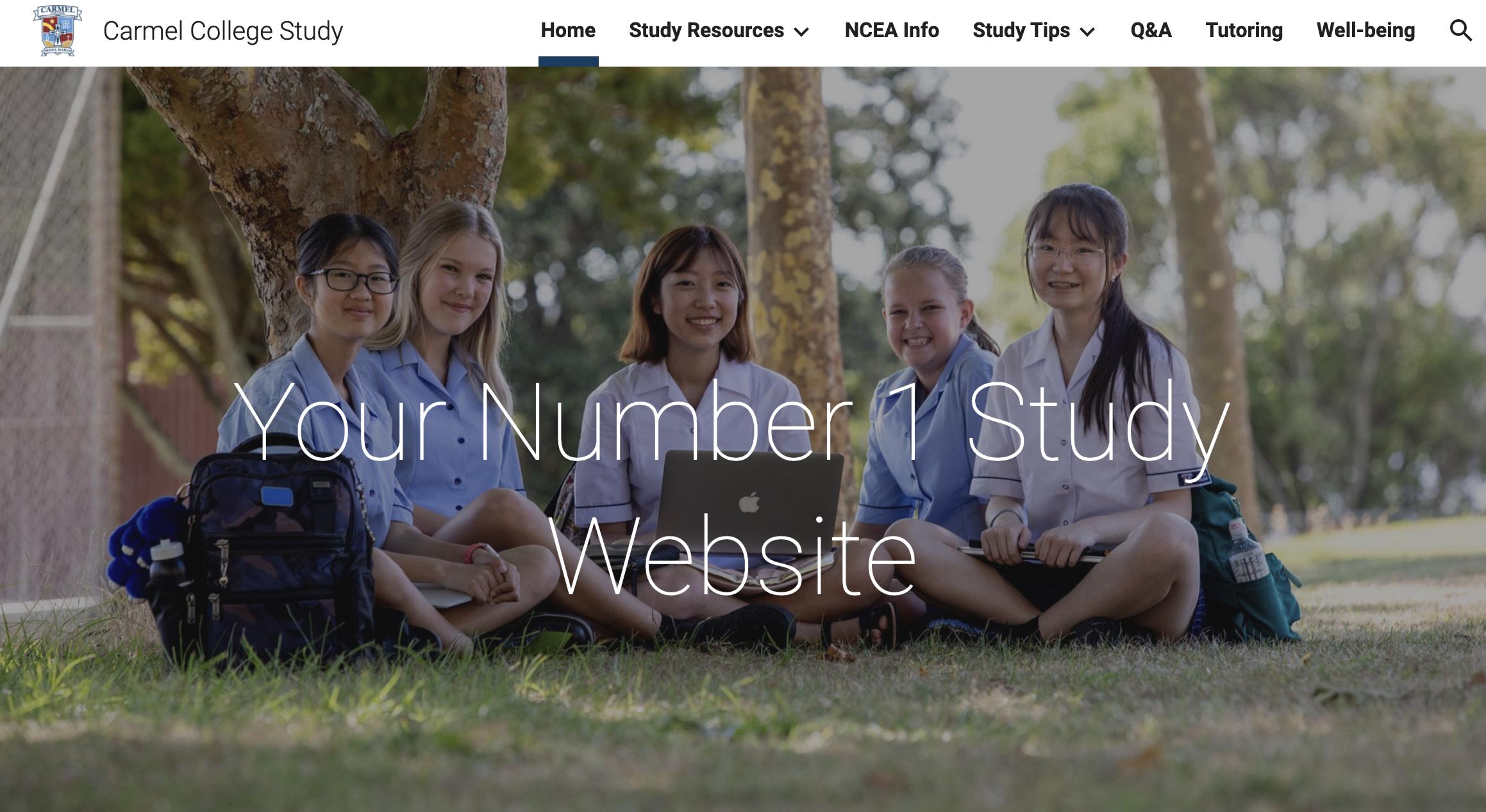 Visit the Carmel Study Website
